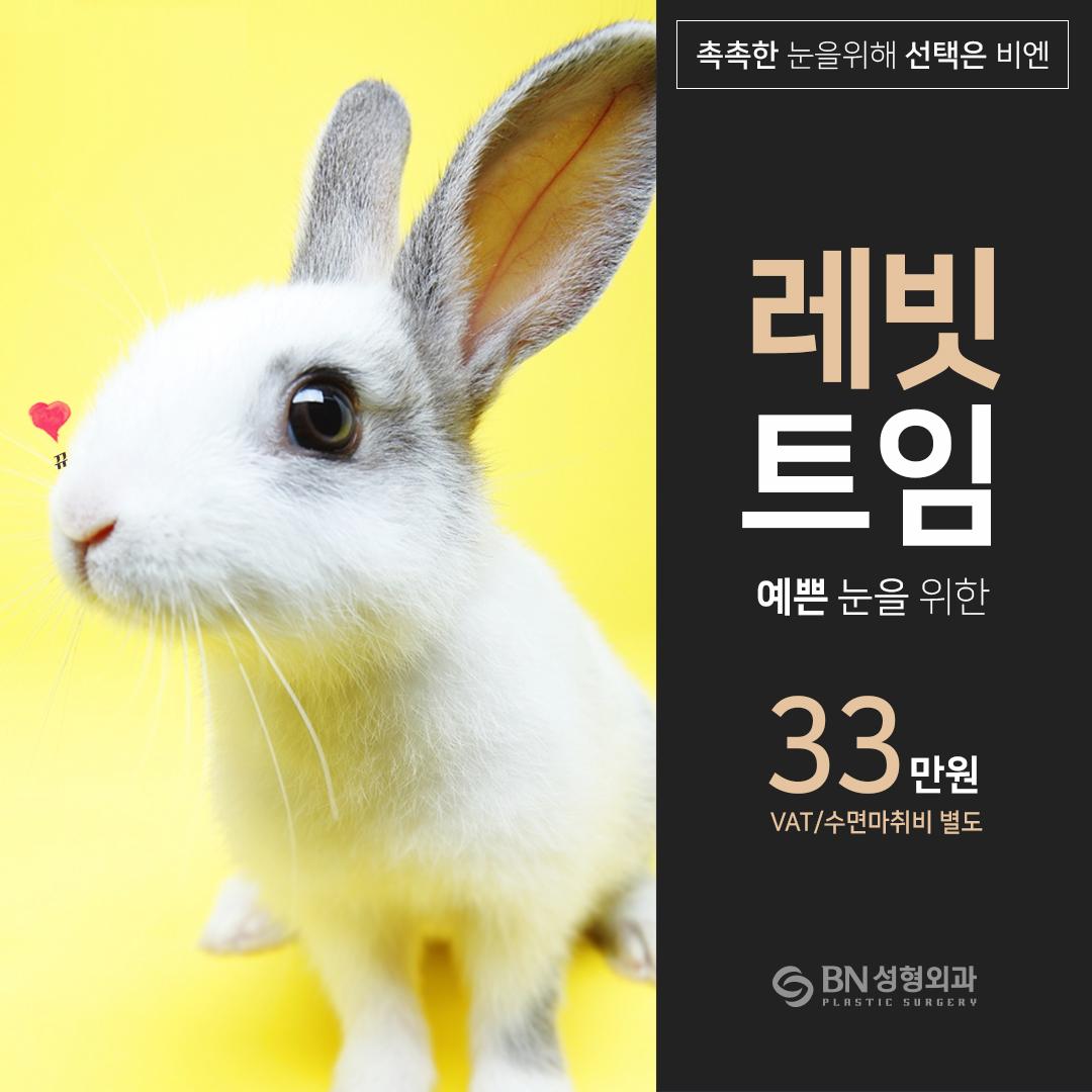 Rabbit 왕눈 토끼 트임