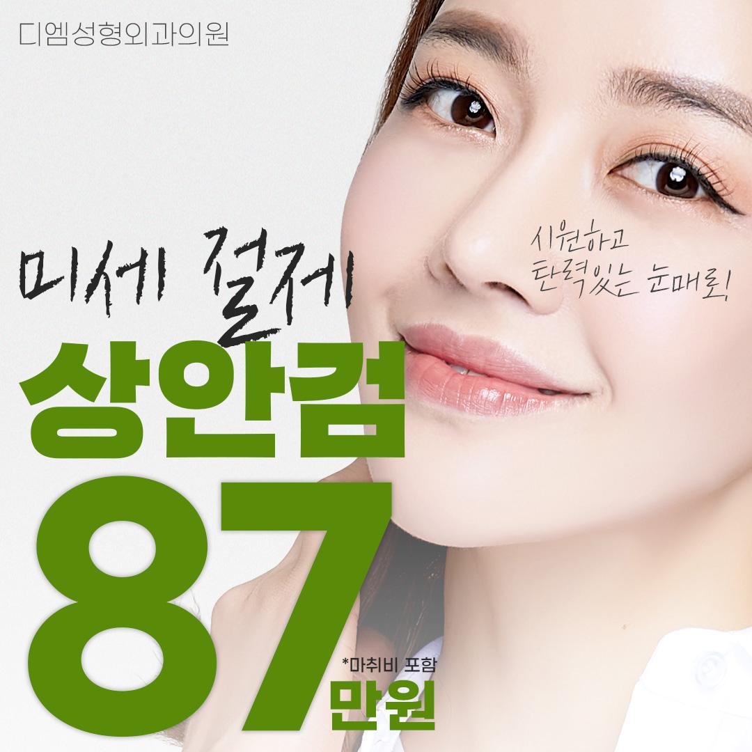 디엠 미세절제 상안검